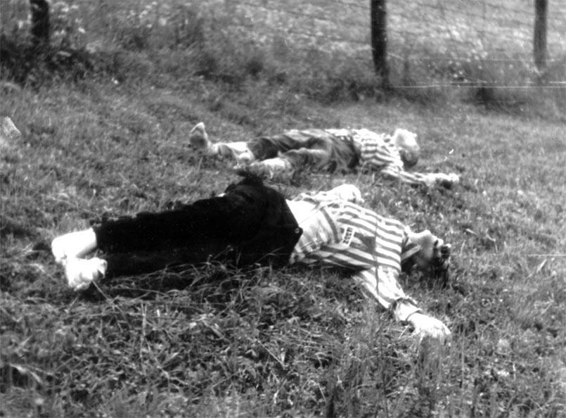 Murdered Prisoners in Mauthausen (Source: NARA)